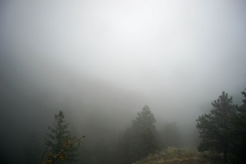 Misty morning on the Gregory Canyon outside Boulder, CO