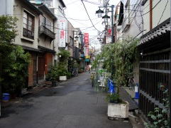 Japan June 2009 056